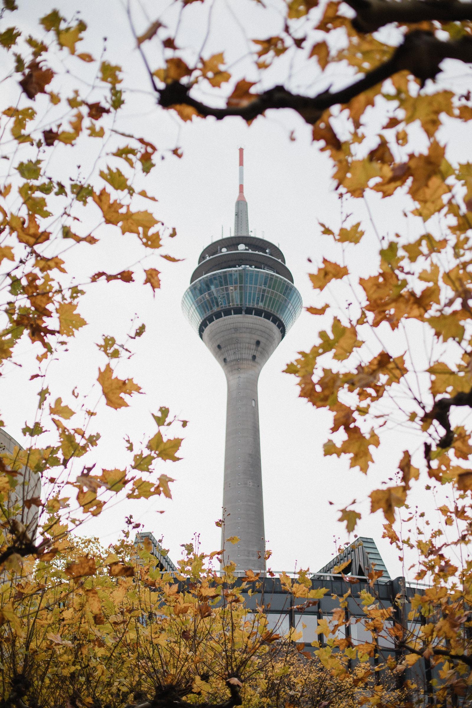 Dusseldorf, 10 endroits à découvrir absolument 3