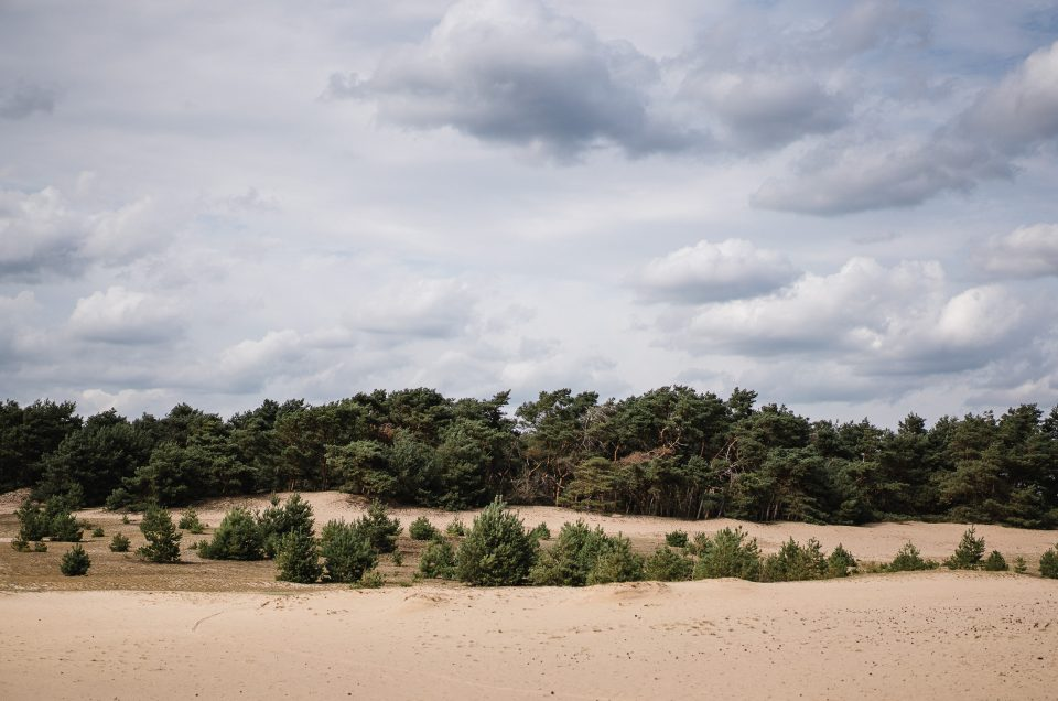 Une après midi au Sahara belge
